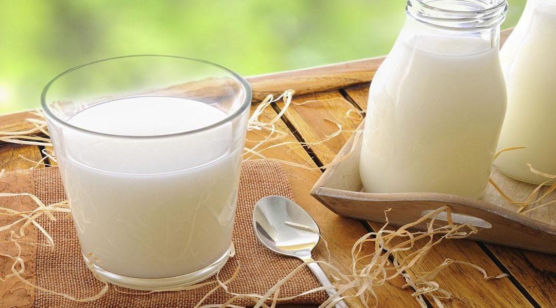Cara Mudah Buat Susu Tepung di Rumah